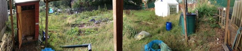 Allotment part two
