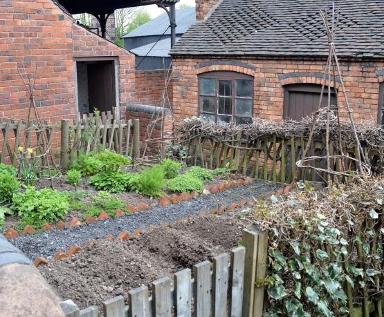 A Miner's garden