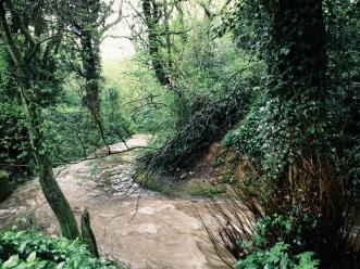 River after rain