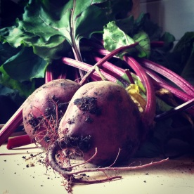 Beets for chutney