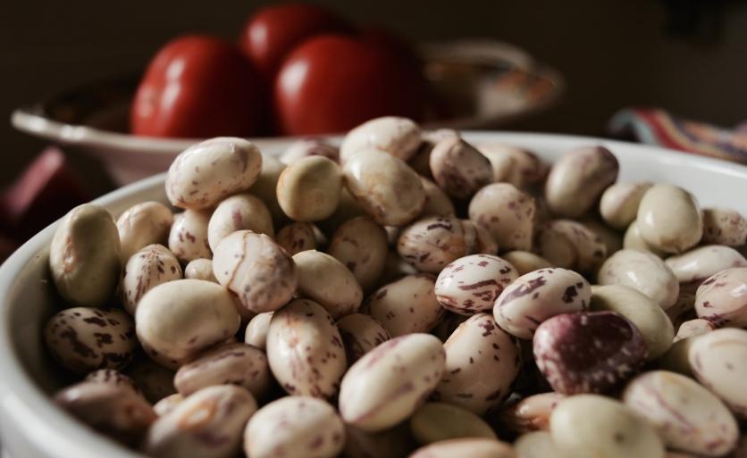 Fresh borolotti beans